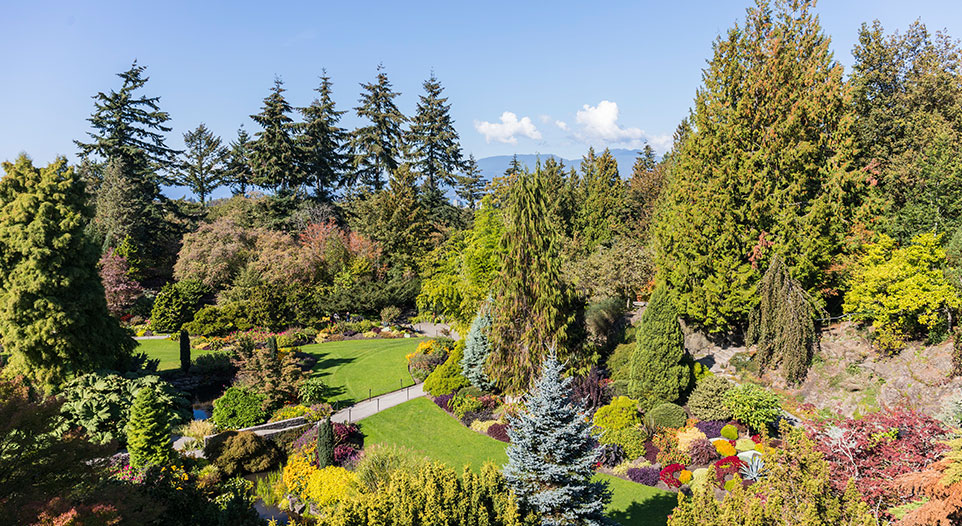 Queen Elizabeth Park and VanDusen Botanical Garden